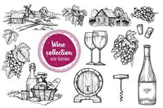 Wine vintage illustration by Alfazet Chronicles on @Graphicsauthor
