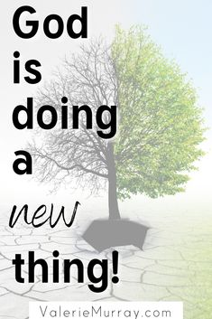 God is Doing a New Thing - Valerie Murray Christian Women, Christian Living, Christian Faith, Christian Quotes, Christian Pics, Streams In The Desert, Christian Encouragement, Spiritual Encouragement, Who Created You