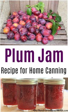 Canning 101 - Cinnamon Plum Jam Low Sugar Recipe Remember those free plums we picked up the other day? Well this morning I whipped up a batch of cinnamon plum jam using a low sugar recipe. Even though I've canned enough jam this summer to last the next ye Low Sugar Recipes, No Sugar Foods, Fruit Recipes, Sugar Free Plum Jam Recipe, Wild Plum Jelly Recipe, Bakery Recipes, Vegan Recipes, Canning 101, Canning Recipes