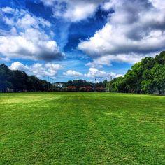 Greenest grass in Forsyth Park in Savannah. Photo courtesy of eachapman4 on Instagram.