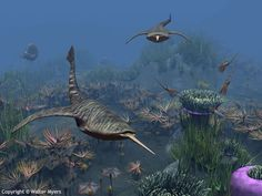 Paleozoic Earth - Primitive jawless fish of the genus Doryaspis swim amongst a bed of sea anemones 410 million years ago; Lyktaspis; Panthalassa; Panthalassic Ocean; Paleo Tethys Sea - Natural History Illustration