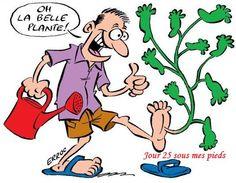 25.02.2016 : quand le temps s'y prête au jardin Belle Plante, Flow, Comics, Cartoons, Comic, Comics And Cartoons, Comic Books, Comic Book, Graphic Novels