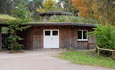 Waldschule Klövensteen in Hamburg-Rissen