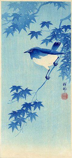 hanga gallery . . . torii gallery: Blue Robin on Maple by Ohara Koson
