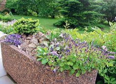 Сад Светланы Полонской - Альпинарий в контейнере
