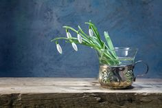 snowdrops in an old vase of silver and glass on a rustic wooden by Maren Winter - Photo 140121709 - 500px