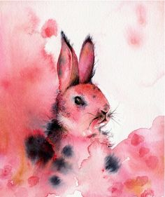 Art, Watercolor, Animals, Rabbit