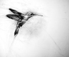 hummingbird: APRIL COPPINI