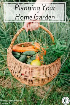 Keep in mind these important garden safety tips for reducing foodborne illness from garden to plate.