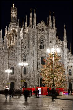 Piazzo Duomo, Milan, Italy by Gio Dong Milan Cathedral, Cathedral Church, The Places Youll Go, Places To See, Beautiful Buildings, Beautiful Places, Christmas In Italy, Italy Pictures, Visit Italy