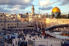 Welcome to TLV-VIP for best tours of Israel. Consult for family and corporate Israel tour & travel packages for an exceptional experience. Jerusalem, Israel Museum, Terra Santa, Visit Egypt, One Day Trip, Concrete Structure, Israel Travel, Archaeological Site, Group Tours