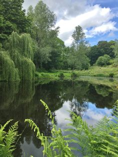 Yesterday Tony told me about some big Brown Trout in the lakes at Little Bognor. I drove down to Fittleworth thinking about the possibility of an encounter with a Monster. I arrived at and … Nature Aesthetic, Aesthetic Photo, Mother Earth, Mother Nature, Ed Wallpaper, Foto Art, Pretty Pictures, Countryside, Nature Photography