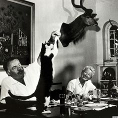 Ernest Hemingway's Cats Didn't Get In The Way Of His Manliness
