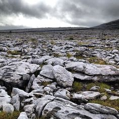 Burren National Park (The Burren) in Corofin, Co Clare. Just miles and miles of endless stone! Really amazing:-) Places To Travel, Places To Visit, Stone Masonry, Dry Stone, Cliffs Of Moher, Places Ive Been, Ireland, Irish, National Parks