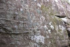 Mysterious hieroglyphs found in Australia may link the fifth continent to history of ancient Egypt