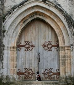 French Medieval Castle Door