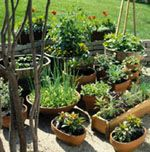 Give your container plants a good start with a healthy soil mix you can make yourself.