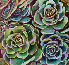 Acrylic painting of four succulent by Linnea Tobias