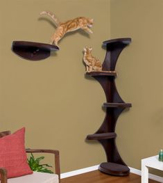 catemporary cat corner tower    someday i wanna have cat shelves for boom to walk on all around the top of our office
