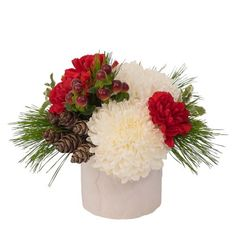 "Peace: A cute ""cable-knit sweater"" ceramic vase holds long lasting white snowball chrysanthemums, red carnations, red hypericum berries and accents of pine and mini pine cones. Christmas Flower Arrangements, Floral Arrangements, Chrysanthemums, Carnations, Red Carnation, Snowball, Ceramic Vase, Pine Cones, Diy Hairstyles"