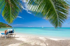 Relaxing on caribbean beach in shade of palm trees