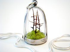 Free US Shipping:  Forest and Moss Terrarium Necklace. $55.00, via Etsy.
