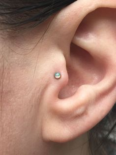 Image result for tragus piercing