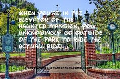 """""""When you're in the elevator of the Haunted Mansion, you unknowingly go outside of the park to ride the actual ride"""" #disneyland"""