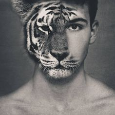 Transformation Homme-Tigre
