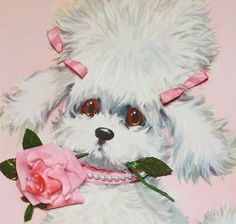 Adorable Little Poodle with Rose Unused Cody Vintage Get Well Greeting Card