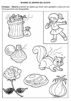 Los cincos sentidos Five Senses Preschool, 5 Senses Activities, Preschool Spanish, Kids Learning Activities, Kindergarten Worksheets, Worksheets For Kids, 5 Senses Worksheet, Fruit Coloring Pages, Activity Sheets For Kids