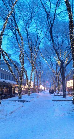 "luinteski: ""A street in Boston. "" ❄️ Christmas Winter Dreamin ❄️ - Shannon M. Shipman - - luinteski: ""A street in Boston. "" ❄️ Christmas Winter Dreamin ❄️ - Shannon M. Winter Magic, Winter Snow, Winter Time, Winter Christmas, Beautiful Places, Beautiful Pictures, Winter Scenery, Snow Scenes, Winter Beauty"