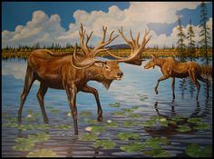Stag-moose | Explore the Ice Age Midwest