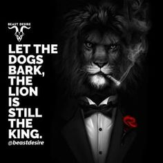 King is King 🐾 . Hd Wallpaper Quotes, Black Hd Wallpaper, Motivational Quotes Wallpaper, Lion Wallpaper, Inspirational Quotes, Deep Meaningful Quotes, Lioness Quotes, Desire Quotes, Beast Quotes