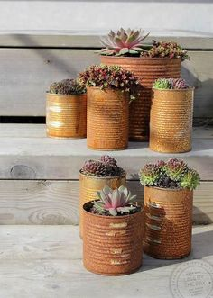Rusty tin can pots, by Lina by the Bay. Flower Planters, Diy Planters, Flower Pots, Planter Pots, Deco Nature, Tin Can Crafts, Market Garden, Creation Deco, Garden Projects