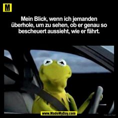 😂😂😂😂😂😂😂😂😂 - Kermit the Frog Memes Wedding Quotes, Wedding Humor, Funny Quotes, Funny Memes, Hilarious, Car Quotes, Funny Picture Jokes, Funny Pictures, Bmw Autos