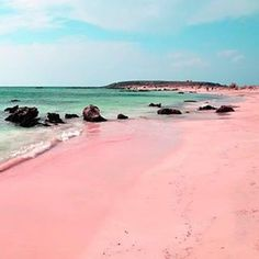 Pink sand on Ellafonisi Beach, Crete, Greece. Pink sand is formed of tiny red organisms that grow on dead coral reefs and pieces of shells which fall to the ocean floor and are washed onto shore.