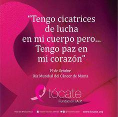 96 Mejores Imágenes De Octubre Rosa Fighting Cancer Breast Cancer