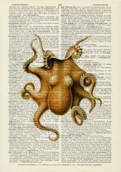 octopus VI -   vintage artwork printed on page  from old dictionary. $12.00, via Etsy.