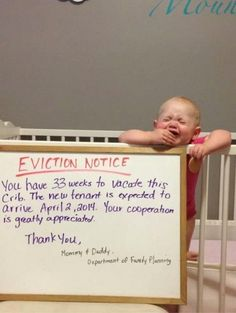 Landlords.... Being a landlord in Ontario is tough ...love finding cute and funny pictures