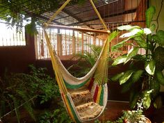 Multicolor+Sitting+Hammock+Hanging+Chair+Natural+by+hamanica,+$39.00