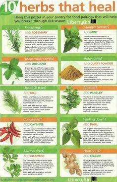 Purpose of a Healing Garden MEDICINE WHEEL | Healing garden