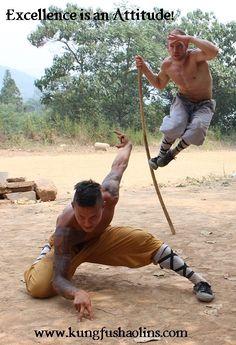 Long Quan & Monkey Pole at Songshan Shaolin Traditional Wushu Academy.  www.kungfushaolins.com