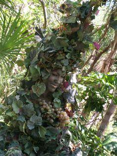 Hidden vine lady at animal kingdom disney