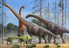 Giraffatitan may or may not deserve its own genus--most paleontologists believe that it was a species of Brachiosaurus--but this was certainly one of the most impressive sauropods of late Jurassic North America. About Sergey Krasovskiy Prehistoric Dinosaurs, Prehistoric Creatures, Prehistoric Wildlife, Historia Natural, Dinosaur Art, Dinosaur Crafts, Jurassic Park World, Illustration Techniques, Environmental Art