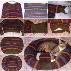 We all have at least one family member or friend who is totally in love with their pets .Here is a nice project for how to DIY pet bed from an old sweater. Diy Pet, Diy Cat Bed, Pet Beds Diy, Cat House Diy, Old Sweater, Cat Sweaters, Wooly Jumper, Lit Chat Diy, Recycled Sweaters