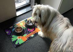Die Fußmatte für den Hund. :) #fußmatte #haustier #futternapf Home Appliances, Dog, Pictures, House Appliances, Appliances