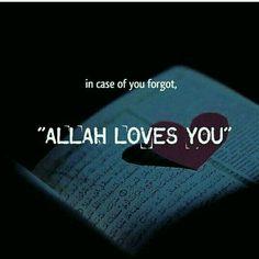 Allah Loves you !