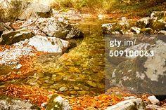 Autumn Pond in Sandankyo valley in Hiroshima, Japan. #nature #travel #japan