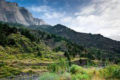 FUNDACION BIODIVERSIDAD  El Parque Nacional de la Caldera de Taburiente es una joya tallada por las erupciones volcánicas, la erosión del agua y el tiempo.